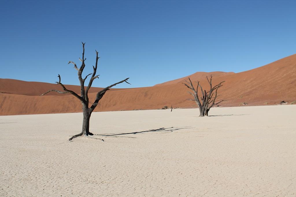 Afrika 2013 – Namíbia (južná časť)