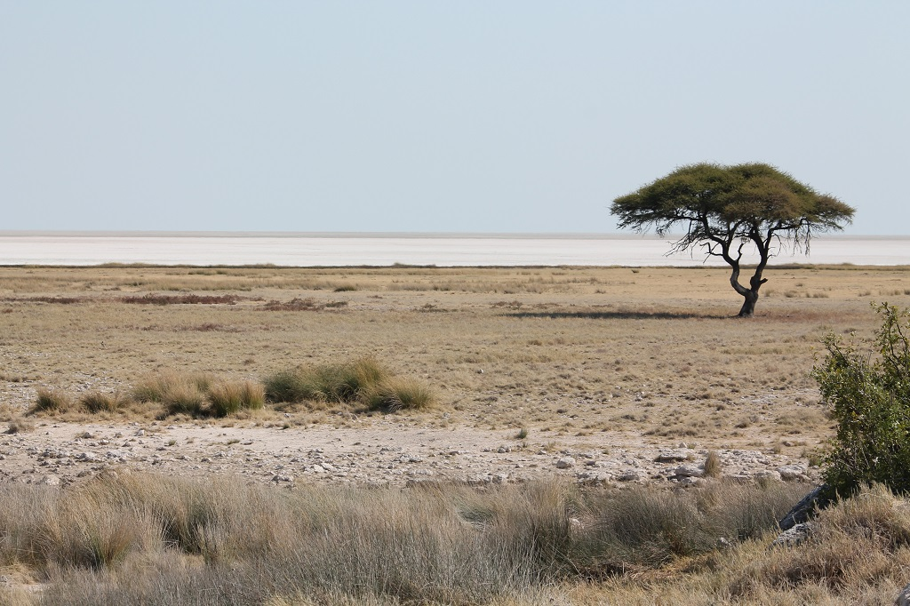 Afrika 2013 – prípravy na cestu