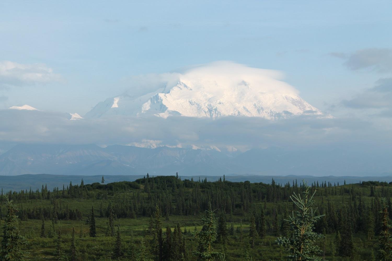 Národný park Denali – divočina v srdci Aljašky