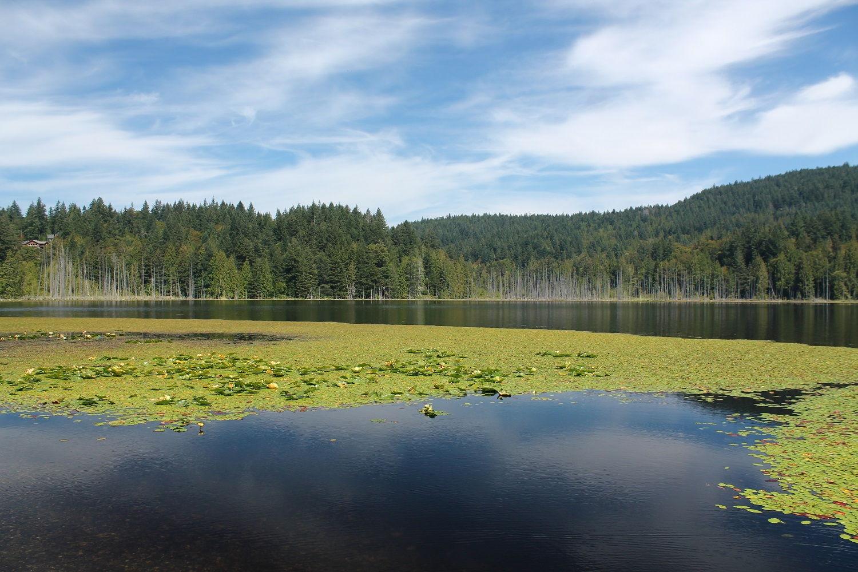Tri tipy na výlet v okolí Vancouveru - Bowen Island, Buntzen Lake, Capilano River